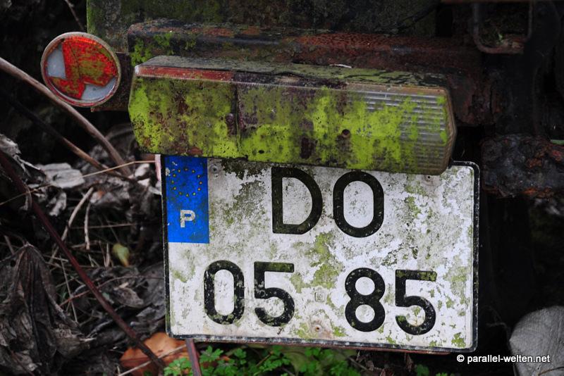 DSC_5853_mini