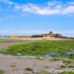 Saint Aubin's Fort